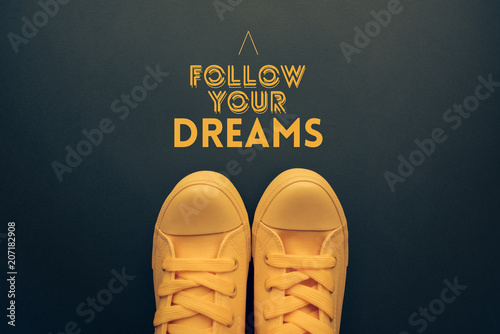 Follow your dreams motivational quote Canvas Print