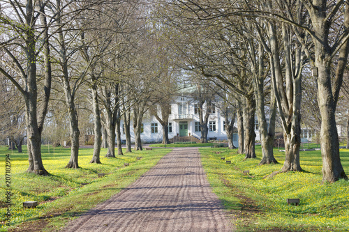 Avenue and a gravelled footpath leading to the queen Victorias hotel and rest ho Billede på lærred