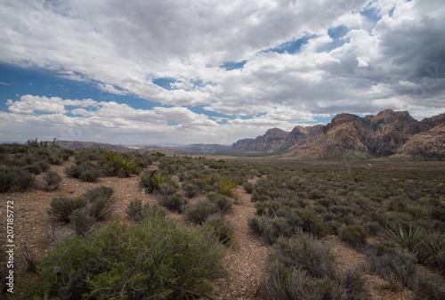 Foto op Aluminium Cappuccino Desert Landscape Beauty