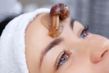 Cosmetological Procedure. Beau...
