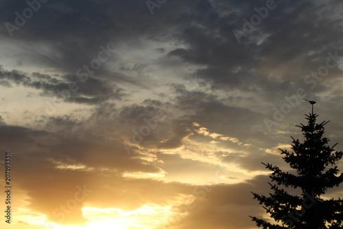Spoed Foto op Canvas Zee zonsondergang The Sunset, Edmonton, Alberta