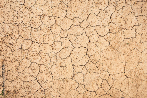 Fotografía Brown dry soil or cracked ground texture background.