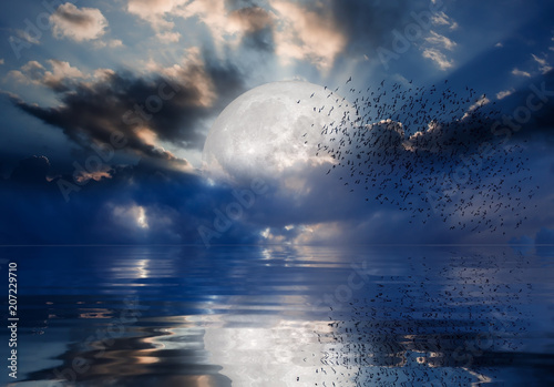 Wall Murals Night sky with moon in the clouds