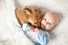 Hund Kuschelt Mit Dem Baby