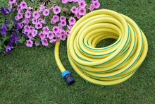 Yellow Hose Pipe On A Grass