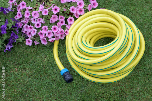 Valokuva Yellow hose pipe on a grass
