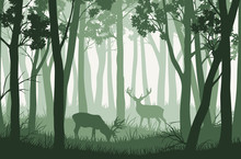 Vector Green Forest Landscape ...