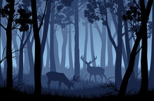 Vector Blue Night Forest Lands...