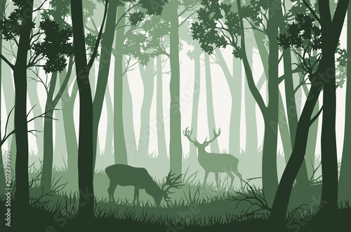 Door stickers Olive Vector green forest landscape with trees and two deers