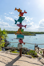 Funny Direction Signpost With Fish Colorful On Mexican Coastline