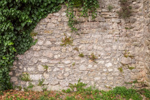Old Stone Wall With Ivy As Rus...
