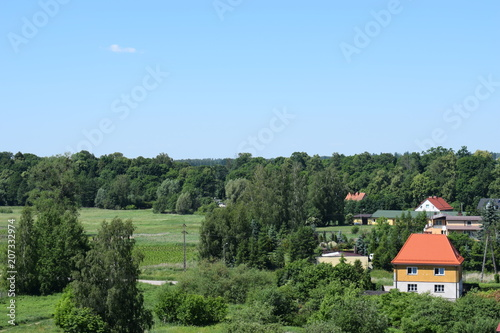 Widok na pola, łąki  las - 207332974