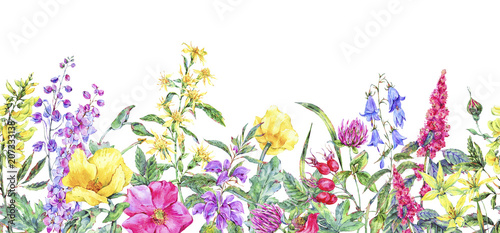 Foto  Watercolor summer medicinal floral seamless border, Wild flowers plant