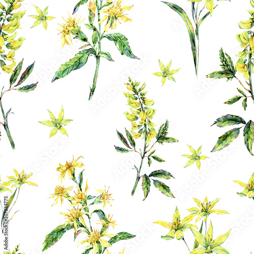 Watercolor summer seamless pattern of medicinal flowers, wildflowers Canvas Print