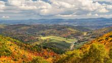 Autumn At Grayson Highlands St...