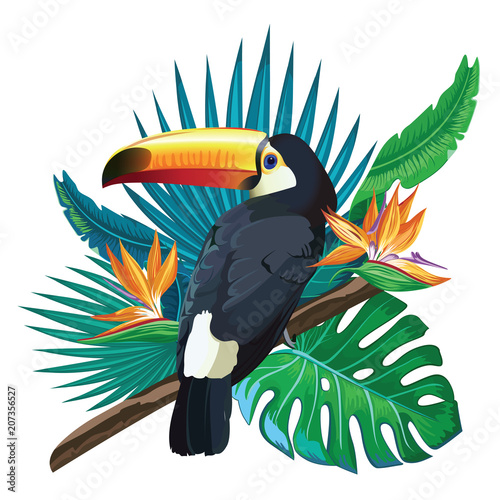 Photo  Toucan, exotic birds, tropical flowers, palm leaves, jungle leaves, bird of paradise