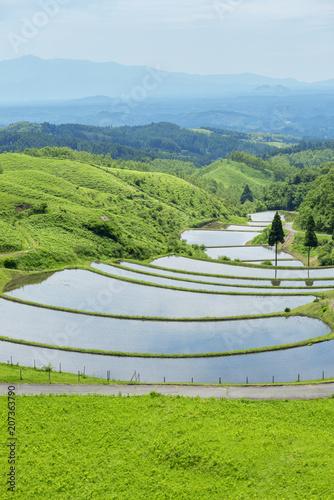 Foto op Plexiglas Asia land 熊本県阿蘇郡産山村 扇棚田