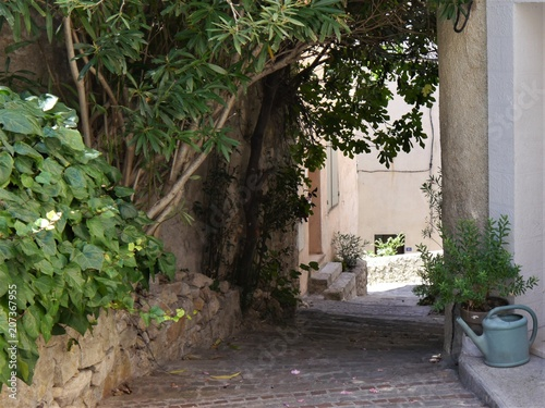 Deurstickers Smal steegje narrow alley in semi-shade, southern France,Pot and tub plants, blue watering can,, coarse cobblestones, walls,