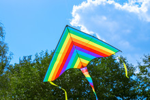 Multi-colored Flying Kite Game...