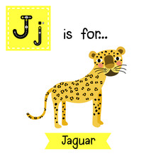 Cute Children Zoo Alphabet J Letter Tracing Of Jaguar For Kids Learning English Vocabulary. Vector Illustration.