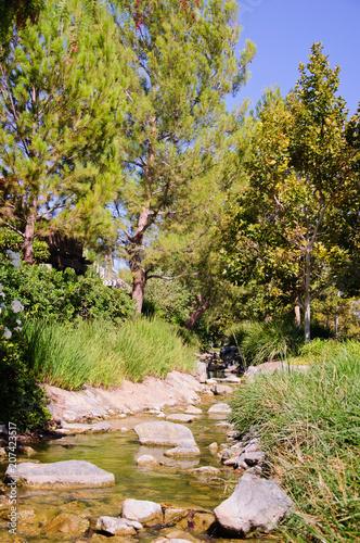 Foto op Canvas Pistache Beautiful landscape along Creek