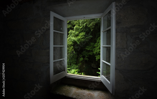 Ventana al bosque Canvas-taulu