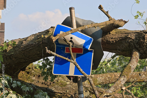 Fotobehang Onweer Durch Sturm und umgekippten Baum zerstörtes Straßenschild