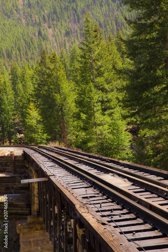 Fotomural Railroad tracks through mountain countryside and pine tree with vintage retro effect