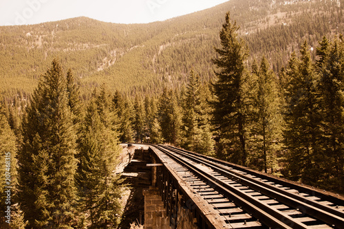 Cuadros en Lienzo  Railroad tracks through mountain countryside and pine tree with vintage retro effect