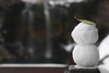 Little Mister Snowman