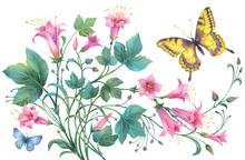 Floral Composition Of Pink Flowers And Yellow And Blue Butterflies  Isolated On White