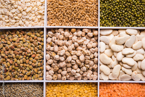 Indian Beans,Pulses,Lentils,Rice and Wheat grain in a white