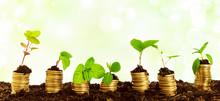 Geld Vermehrung Wirtschaft - Konzept