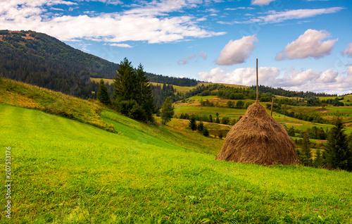 Fotografia, Obraz haystack on a grassy meadow in mountains
