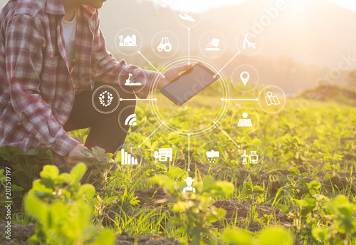 Photo  Agriculture technology farmer man using tablet computer analysis data and visual icon