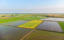 Aerial: Rice Paddies, Flooded Cultivated Fields Farmland Rural Italian Countryside, Agriculture Occupation, Sprintime In Piedmont, Italy