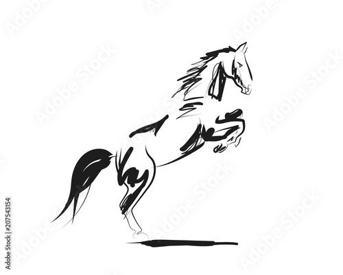 Photographie Vector ink sketch of a horse