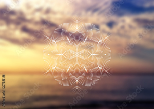 "Fotografie, Obraz  Vector template of banner, horizontal format; Spiritual sacred geometry; ""Flower of life"" and lotus on psychedelic natural forest photographic background; Yoga, meditation and relax"