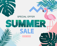 Abstract Tropical Summer Sale ...