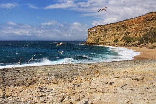 Foto op Plexiglas Kust Crystal clear and wild waters in Praia da Foz, Sesimbra, Portugal