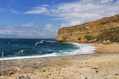 Poster Kust Crystal clear and wild waters in Praia da Foz, Sesimbra, Portugal