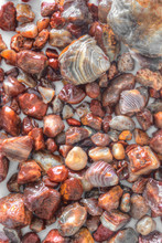Lake Superior Agates Are The State Gem Of Minnesota