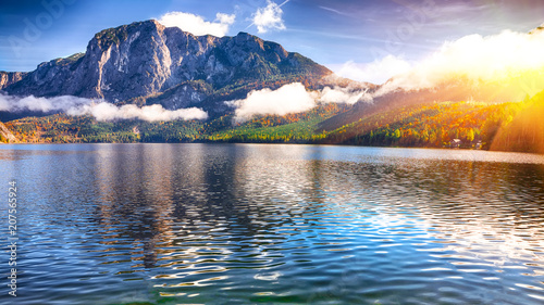 Poster Meer / Vijver Sunny morning on the lake Altausseer See Alps Austria Europe