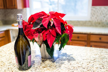 Closeup Of Homewarming Housewarming Gift Of Large Bottle Of Champagne And Winter Red Poinsettia Potted Plant On Kitchen Island Granite Countertop For New Homeowners Buying Moving Real Estate