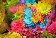 Colores Flores