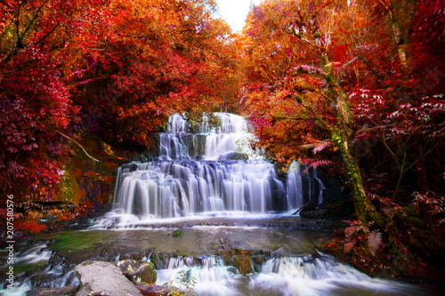 Foto op Aluminium Herfst Long Exposure photography. Beautiful waterfall in the rainforest with green nature. Purakaunui Falls, The Catlins, New Zealand. Photoshop changed leaves to red color.