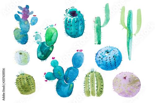 Cadres-photo bureau Aquarelle la Nature Watercolor hand drawn spiky cactus bloom flower.