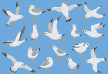 Atlantic White Seabird Fly At Sky. Beach Seagull At Quay. Sea Birds, Gull Cartoon Vector Illustration