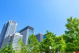初夏の高層ビル群 High-rise building in Tokyo