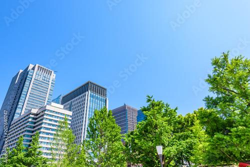 Fototapeta 初夏の高層ビル群 High-rise building in Tokyo obraz